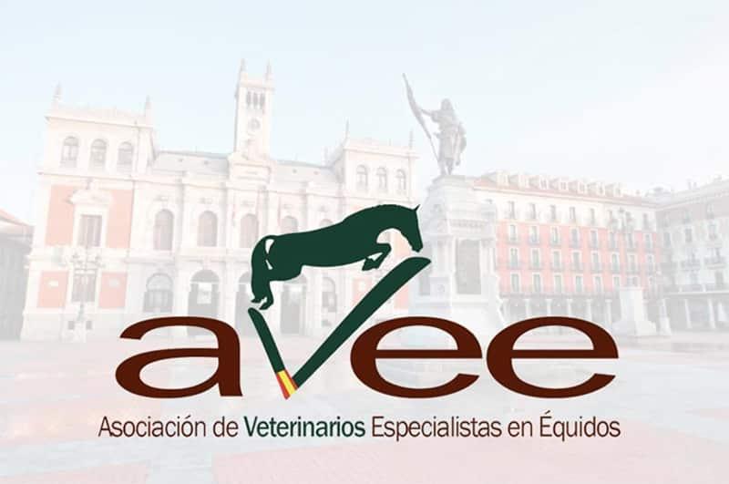 FULLCOVER en el IX Congreso Anual de la asociación española de veterinarios especialistas en équidos